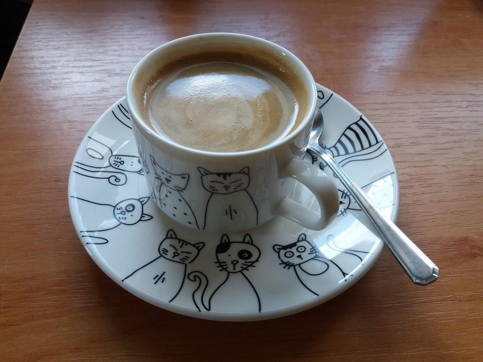Všetko sa začalo pri šálke kávy…