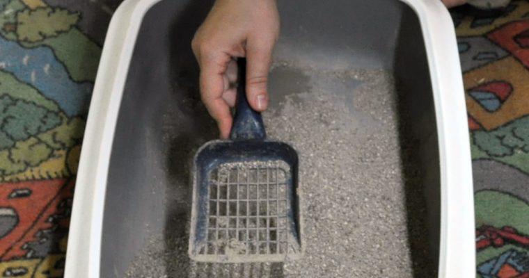 Akú podstielku do mačacej toalety ?